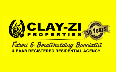 Clay-Zi Properties